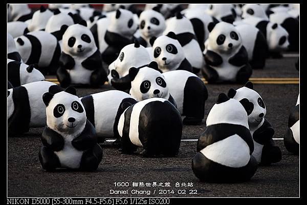 nEO_IMG_140222--1600 Pandas 034-800.jpg