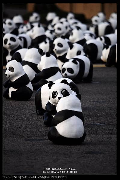 nEO_IMG_140222--1600 Pandas 039-800.jpg