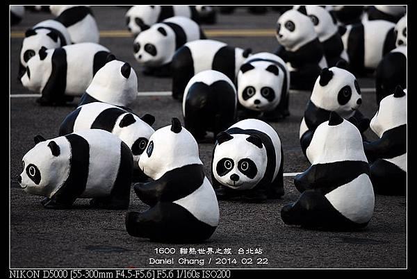 nEO_IMG_140222--1600 Pandas 042-800.jpg