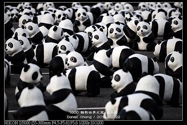 nEO_IMG_140222--1600 Pandas 046-800.jpg