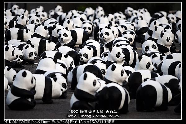 nEO_IMG_140222--1600 Pandas 095-800.jpg