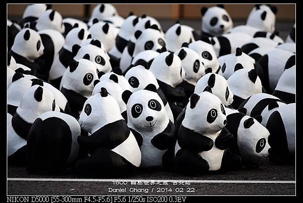 nEO_IMG_140222--1600 Pandas 099-800.jpg