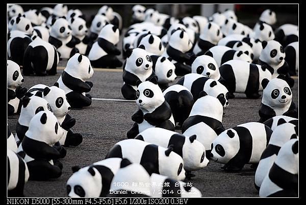 nEO_IMG_140222--1600 Pandas 101-800.jpg
