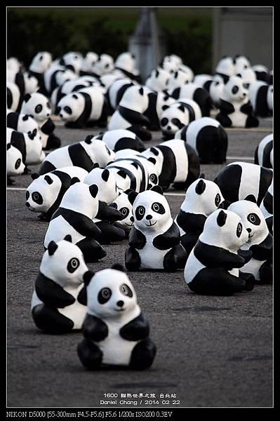 nEO_IMG_140222--1600 Pandas 113-800.jpg