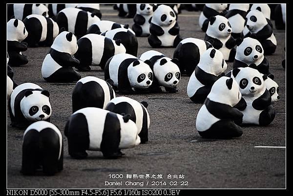 nEO_IMG_140222--1600 Pandas 115-800.jpg