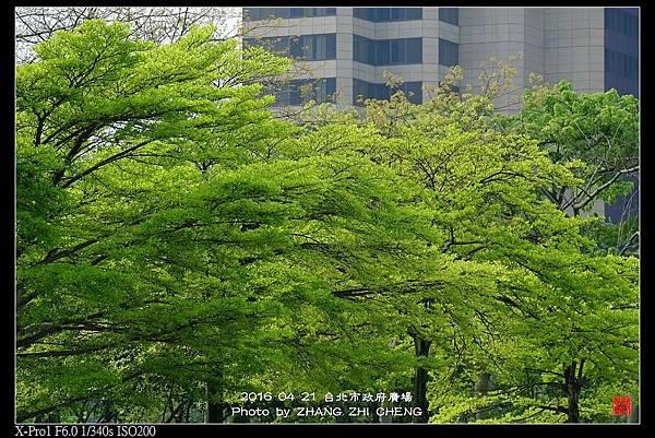 nEO_IMG_160421--Street Snap shots 002-crop-1000.jpg