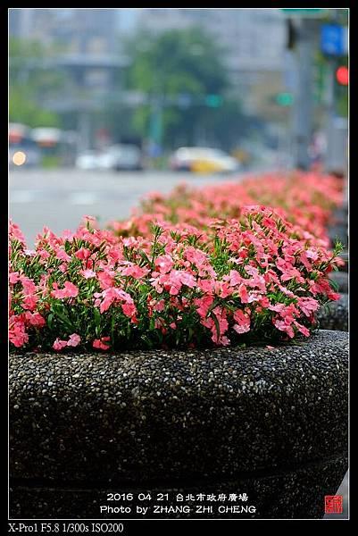 nEO_IMG_160421--Street Snap shots 041-1000.jpg