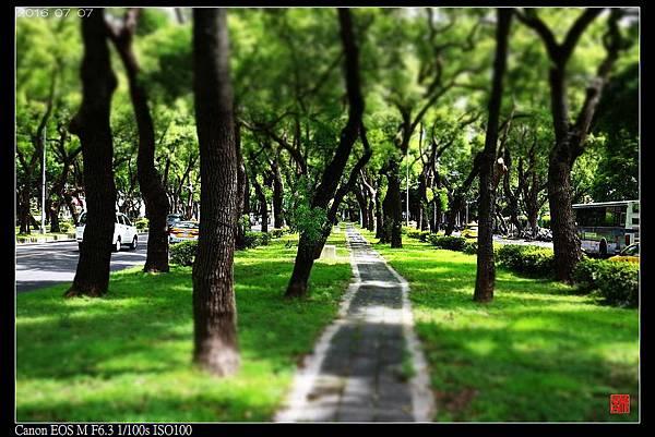 nEO_IMG_160707--Dunhua N. RD 027-1000.jpg