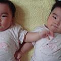 2007.06.21我的寶貝 160.jpg