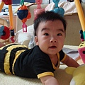 2007.06.21我的寶貝 224.jpg