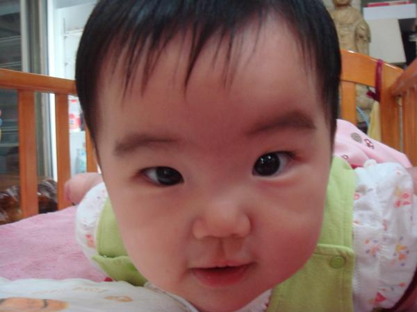 2007.06.21我的寶貝 264.jpg