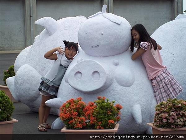 與豬之合影