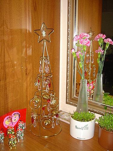 vania第一次送媽咪的康乃馨