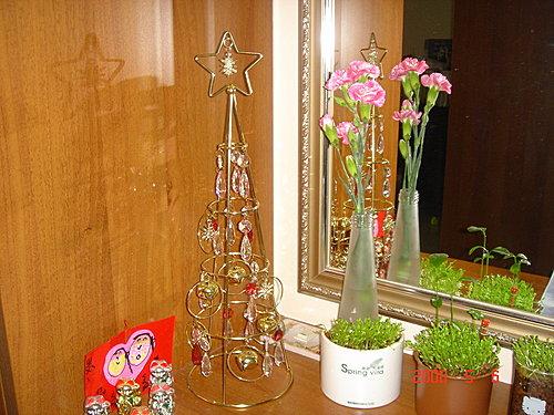 鞋櫃上的康乃馨