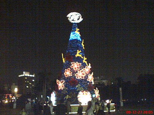 中央公園聖誕樹