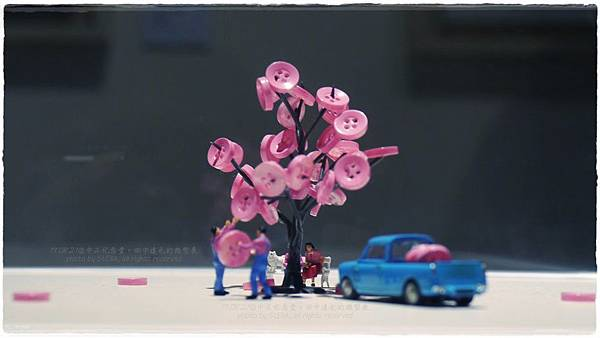P1700827 Cherry blossoms.JPG