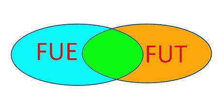 FUE+ FUT-2