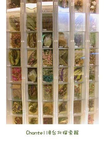 花草種子標本