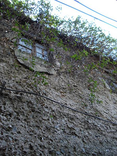 用廢瓦砌成的老牆
