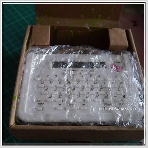 P1110691