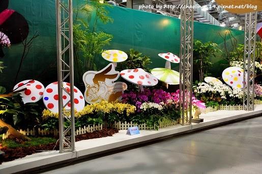 2013花卉設計(爭豔館)-34
