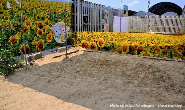 向陽農場-35