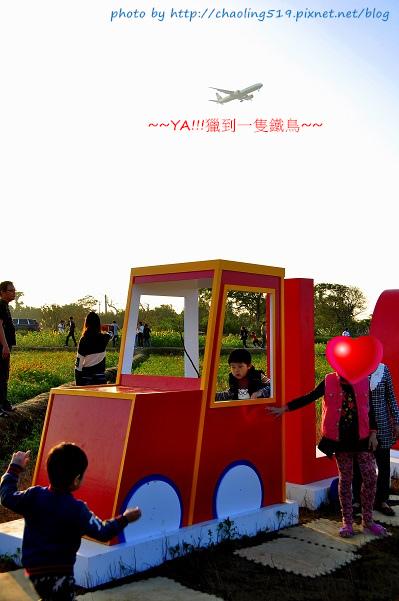 2015桃園花彩節-11.JPG