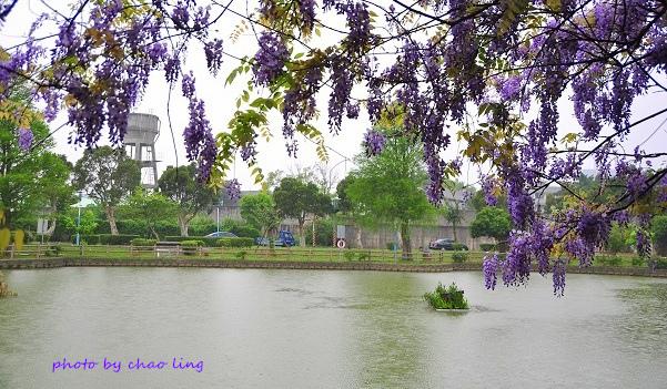 大湖公園-1.JPG