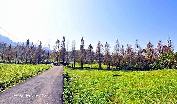 橫山冬景-16.JPG