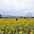 彩虹河濱公園-4.JPG