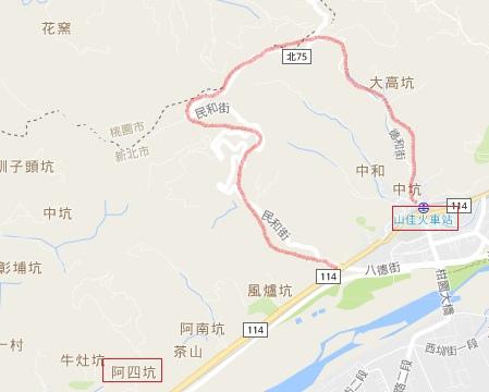 樹林賞桐-2.jpg