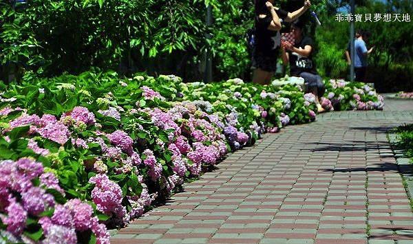 黎明步道花園-1.JPG
