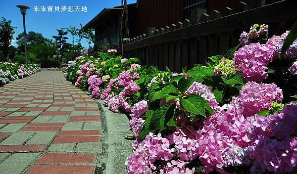 黎明步道花園-28.JPG