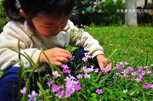 樂活公園-19.JPG