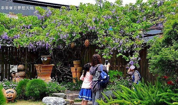 台北花卉村-4.JPG