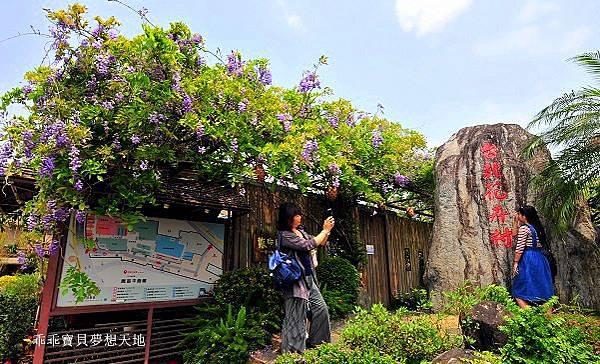 台北花卉村-3.JPG
