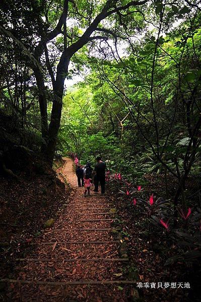 老公崎步道-4.JPG