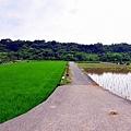 阿助伯農場-2.JPG