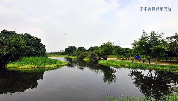 鹿角溪濕地-3.JPG
