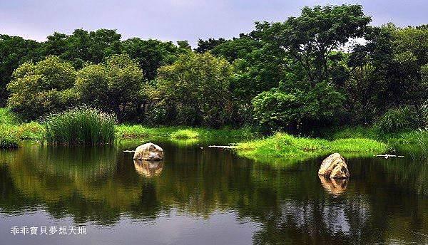 鹿角溪濕地-24.JPG