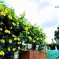 柑園國中-2.JPG