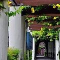 柑園國中-4.JPG