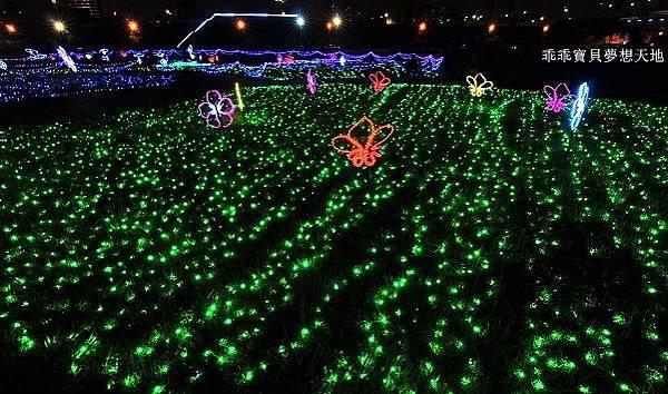 蝴蝶公園-8.JPG