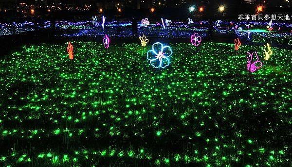 蝴蝶公園-9.JPG