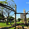 風禾公園-28.JPG