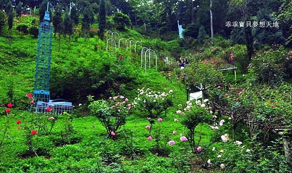 雅聞七里香玫瑰森林-32.JPG