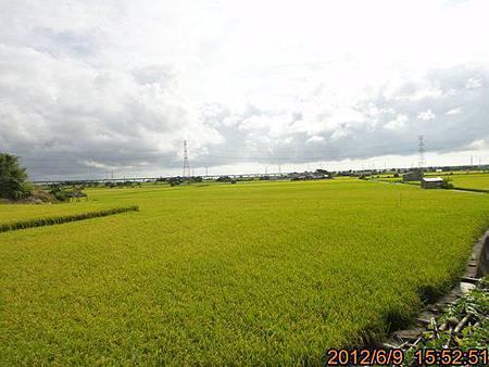 TCH901.jpg