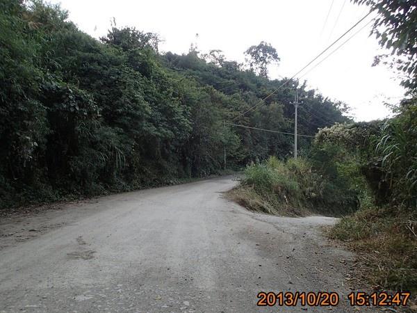 NT1303.jpg