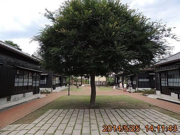 DSCN3319.jpg