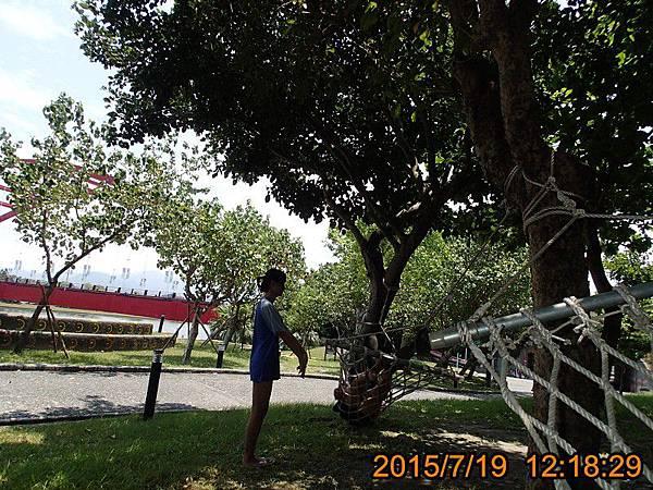 P7191004.jpg